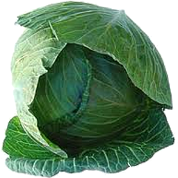 Cabbage - Whole