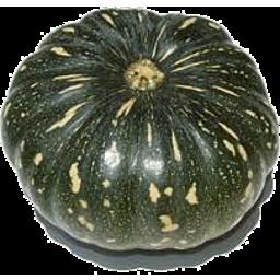 Jap Pumpkin