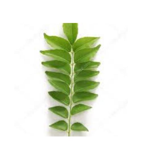 Curry Leaf Pack