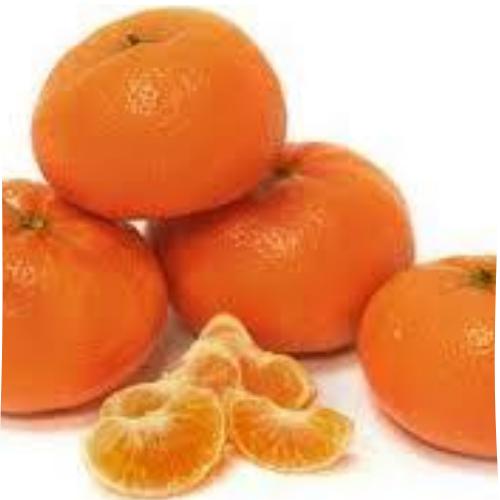 Honey Murcott Mandarin