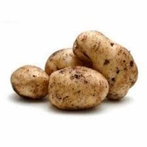 Sebago Potatoes